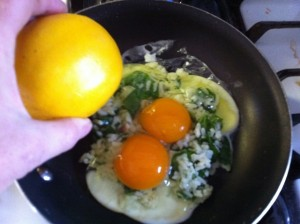Pic: Chicken yolk color compared to an orange.